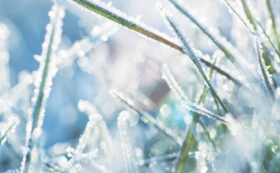 How To Winterize Your Irrigation System On The Fly