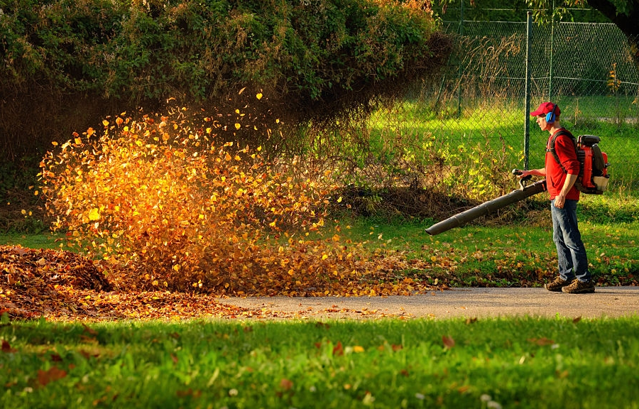 Advantages and Disadvantages of Cordless Leaf Blower 2020