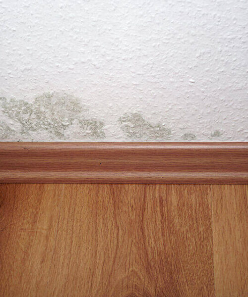 Moisture Prevention for Your Home