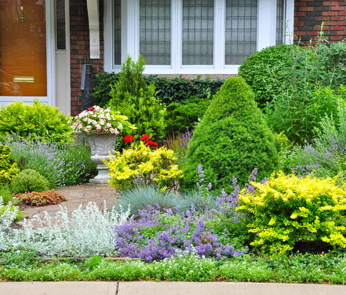 Lose the Lawn: Better Yards and Gardens